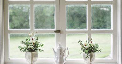 Fensterdichtungen selbst erneuern