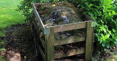 Kompost selbst bauen