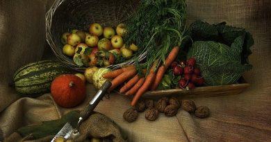 Gemüsearten im Herbst anbauen