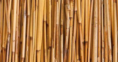 Bambus Sichtschutz selbst bauen